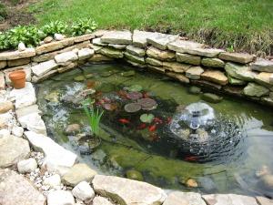 Pond 09